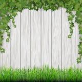 Bedecken Sie und hängender Efeu auf weißem hölzernem Plankenhintergrund mit Gras Lizenzfreie Stockfotografie