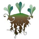 Bedecken Sie vith Boden mit Gras stockbild