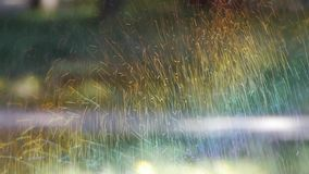 Bedecken Sie Wasserspray im Holz, Sonnenscheinregenbogen auf Rasenhintergrund, Tröpfchenhintergrund mit Gras stock footage