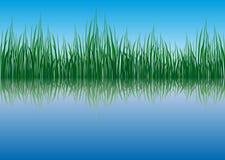 Bedecken Sie Waterside mit Gras Stockfotos
