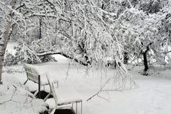 Bedeckt im Schnee   2 Lizenzfreies Stockfoto