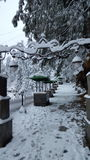 Bedeckt mit Bestimmungsortwinter Schönheit Schneeasiens schönem Pakistan hypnotisierendem reisendem Lizenzfreie Stockbilder