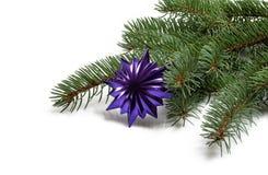 Bedeckt mit Niederlassung eines Weihnachtsbaums und des tiefpurpurnen Sternes Lizenzfreies Stockbild