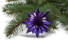 Bedeckt mit Niederlassung eines Weihnachtsbaums und des tiefpurpurnen Sternes Lizenzfreies Stockfoto