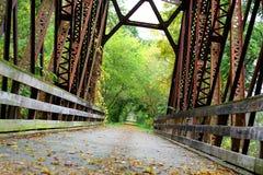 Bedeckte Eisen-Brücke im Holz Stockfoto