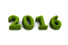 bedeckte Grün des neuen Jahres 2016 das Konzept mit Gras, das auf weißem Hintergrund lokalisiert wurde Stockfoto