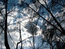Bedeckter Himmel Lizenzfreie Stockfotografie