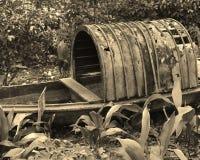 Bedecktes Kanu, das im Wald verrottet Lizenzfreie Stockbilder