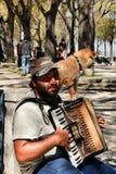 Bedelaar die de harmonika spelen die met zijn hond bedelen royalty-vrije stock afbeelding