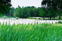 The Bedford House Cemetery world war one Ypres Flander Belgium Royalty Free Stock Photo