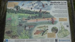Bedford Park Lake London Borough van Havering stock foto