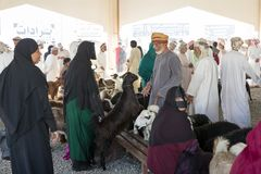 Bedhouin妇女在Sinaw山羊市场上 免版税库存图片