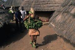 BEDIKS - Senegal Foto de archivo libre de regalías
