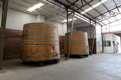 Bednie wino przy wytwórnią win Santa Rita Obraz Stock