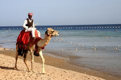 Bedouin Immagini Stock Libere da Diritti