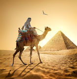 Bedouin and bird Royalty Free Stock Photography