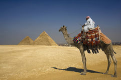 Bedouin On Camel Against Pyramids In Egypt. Side view of a Bedouin on camel against the pyramids in Egypt stock photo
