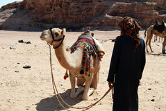 Bedouin with camel in the desert, Jordan. Bedouin with camel waiting for tourist, Jordan royalty free stock images