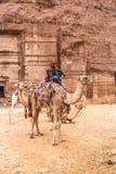 Bedouin on camel, Petra, Jordan Stock Photography