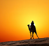 Bedouin on camel silhouette against sunrise Stock Photos