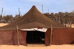 Bedouin camp. In the sahara desert Stock Photos