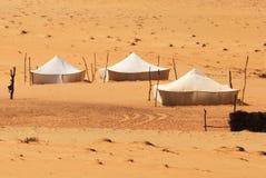 Bedouin camp. In the sahara desert royalty free stock photos