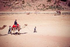 Bedouin child with camel and tourist in Petra, Jordan Stock Images