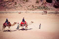 Bedouin child with camel and tourist in Petra, Jordan Royalty Free Stock Photography