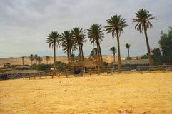 Bedouin dorp   Royalty-vrije Stock Afbeeldingen