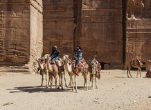 Bedouin geleid op kamelen dichtbij Koninklijke graven petra jordanië Stock Foto