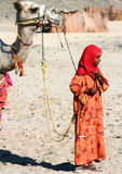 A Bedouin Girl Holds a Camel for a Bridle. Egypt, May 2012 year Royalty Free Stock Photo
