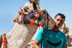 Bedouin and his camel a portrait close-up Stock Photos