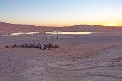 Bedouin kamp in de woestijn van de Sahara Royalty-vrije Stock Foto's