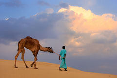 Bedouin leading his camel in Thar desert near Jaisalmer, India Stock Photos