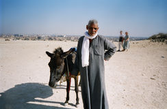 Bedouin man with donkey. Cairo, Egypt Royalty Free Stock Images