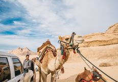 Bedouin men with camel standing in the background of rock in Wadi Rum desert. Jordan royalty free stock images