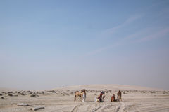Bedouin met dromedaris Royalty-vrije Stock Foto