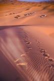 Bedouin nomad tent camp, Erg Chebbi, Morocco. Sahara, Morocco Royalty Free Stock Photo