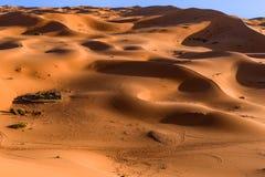Bedouin nomad tent camp, Erg Chebbi, Morocco, Sahara. Morocco Royalty Free Stock Photos