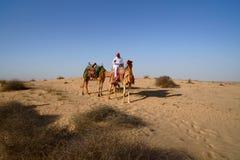 Bedouin op Kameel Royalty-vrije Stock Afbeeldingen