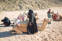Bedouin people with camels resting on desert in Egypt Royalty Free Stock Photography