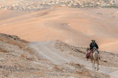 Bedouin riding a camel Royalty Free Stock Images