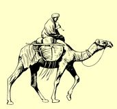 Bedouin riding a camel. Available in high-resolution and several sizes to fit the needs of your project Royalty Free Stock Photography