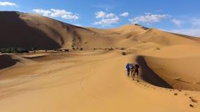 Bedouin seeking oasis Stock Image