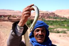 Bedouin with snake Royalty Free Stock Photography