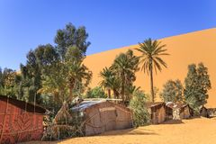 Bedouin tents. And trees in the desert Stock Photos