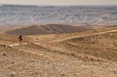 Bedouin tribesman Royalty Free Stock Image