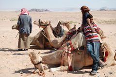 Bedouins with camels in the desert Stock Photo