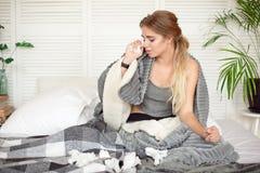 Bedrövligt sammanträde för ung kvinna på sängen som slås in i den varma filten som känner sig sjuk med influensa royaltyfri bild