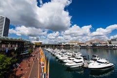 Bedårande hamn Sydney Arkivfoton